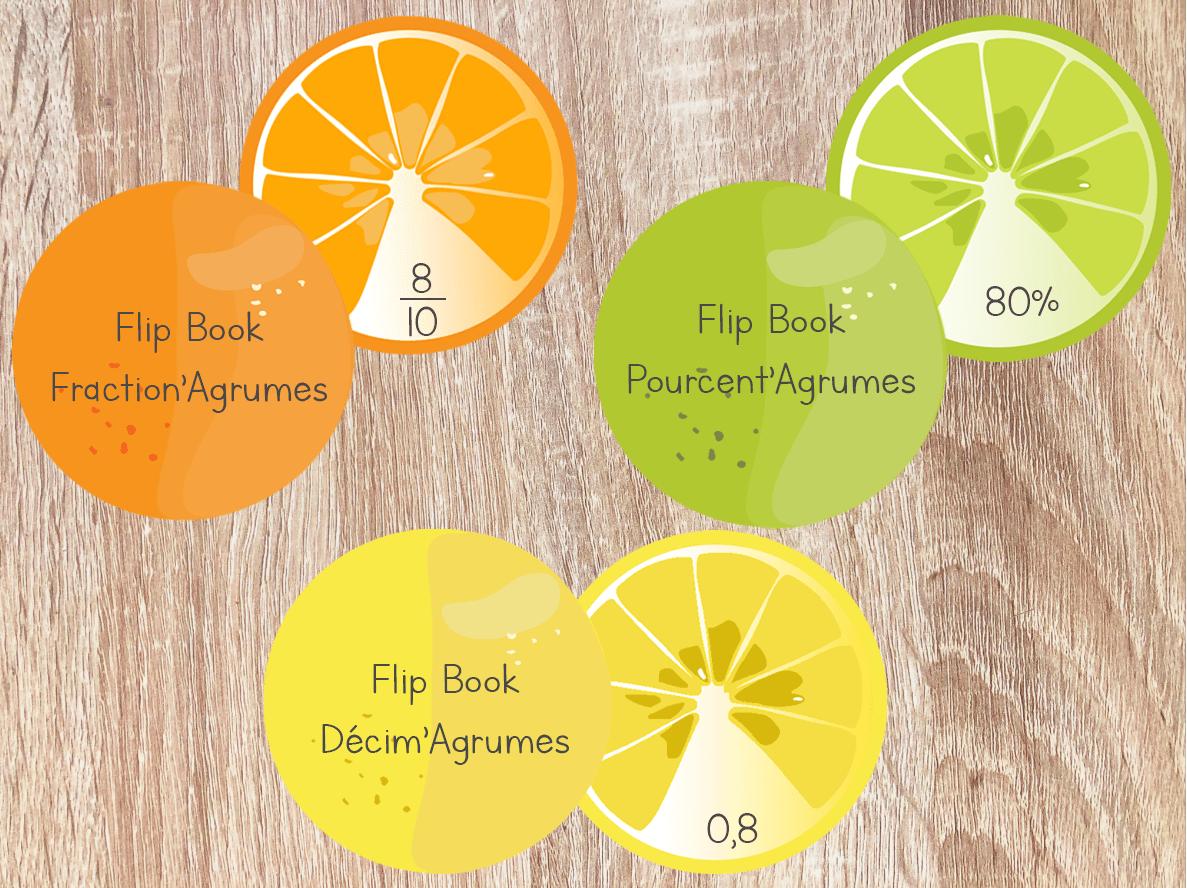 FlipBook – Fractions / Décimaux / Pourcentages